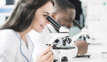 Científico descubre cómo crear embriones sin óvulos ni esperma
