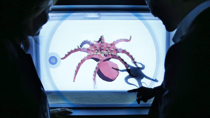 EEUU desarrolla 'robots calamares' para áreas de acceso restringido