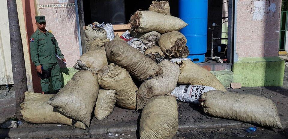 Decomisan cientos de sacos de carbón vegetal durante operativo