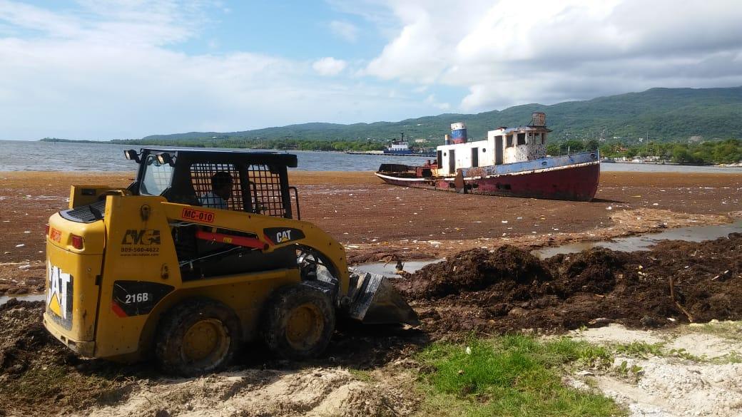 Realizan operativo de limpieza de algas marinas en playas de Barahona hasta Perdenales