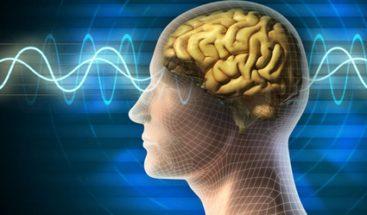 La menor energía neuronal hace al cerebro más proclive a enfermar con la edad