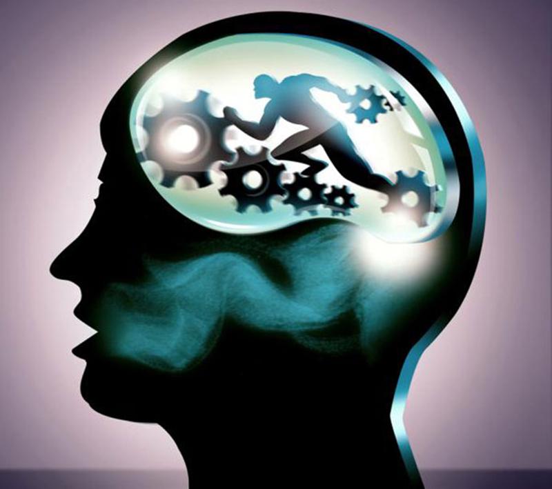 Diseñan un entrenamiento psicológico que reduce agresividad de excombatientes