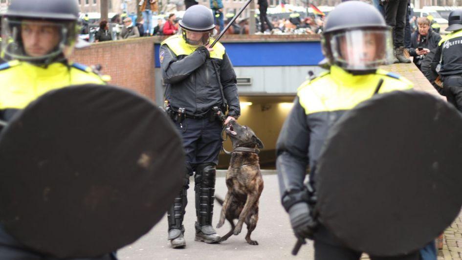 Policía holandesa entrena perros para dar con violadores a través de esperma