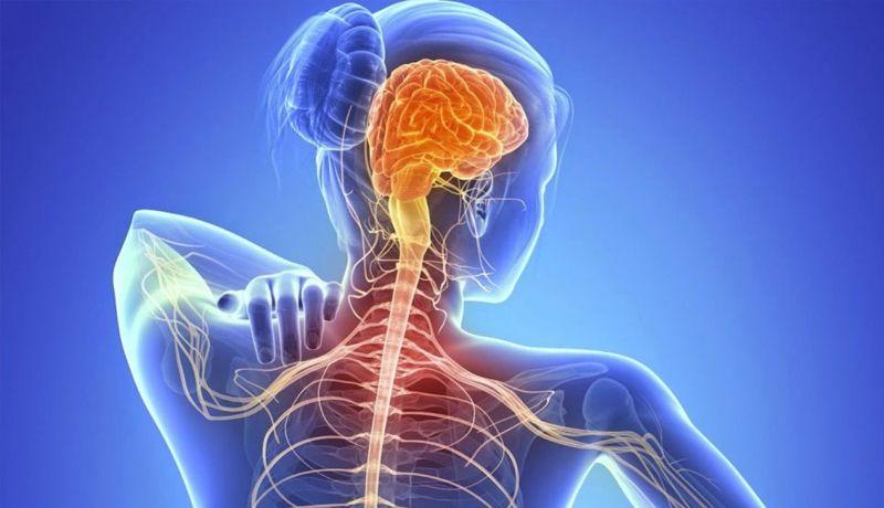ELA es una enfermedad progresiva que afecta a 3 de cada 100.000 habitantes