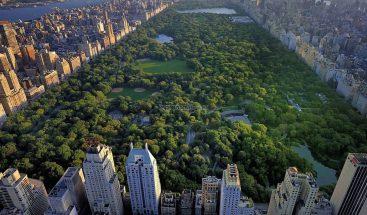 Central Park prohíbe la entrada de vehículos tras décadas de reivindicaciones