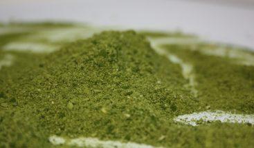 Harinas de microalgas, nuevo ingrediente alimentario saludable y nutritivo