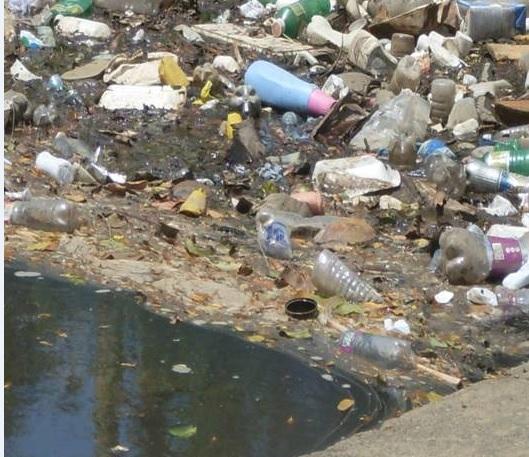 Califican como alarmante acumulacion deplásticos en rio Yaque