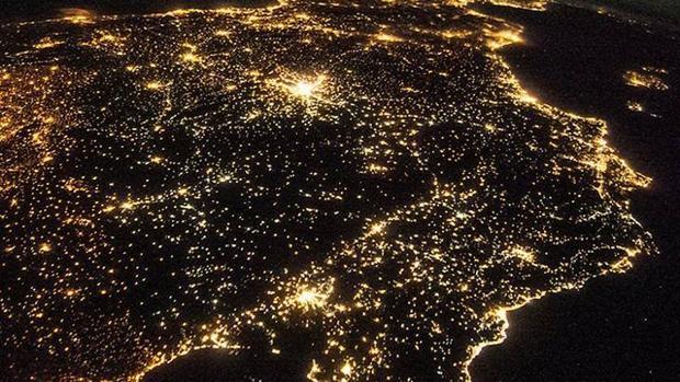 Contaminación lumínica altera las actividades de los animales