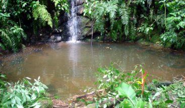 Sur Futuro convoca a la 5ta. edición del Premio ecológico a la Siembra de Agua