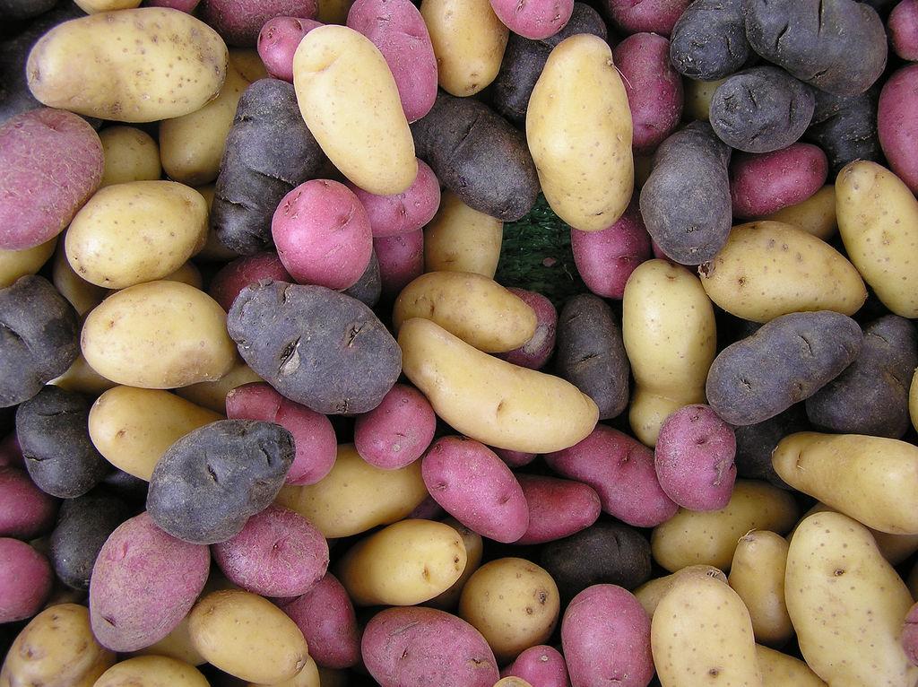 Las papas de colores, desconocidas armas de Perú contra desnutrición y cáncer