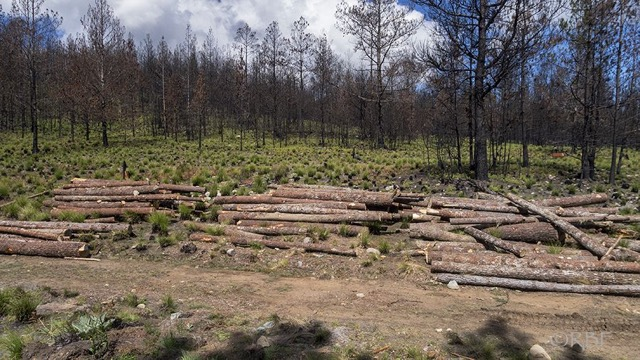 Advierten a Medio Ambiente sobre acciones judiciales por Valle Nuevo