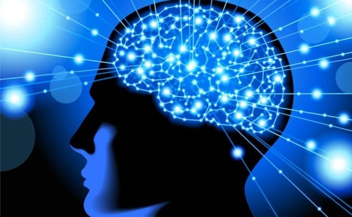 Descubren parte del cerebro clave en el paso de ver a actuar