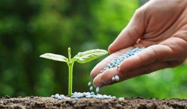Latinoamérica debe evitar el uso indiscriminado de fertilizantes