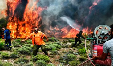 Cifra de muertos por incendios en Grecia asciende a 79
