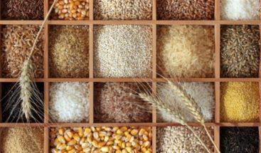 Cereales y semillas: alimentos novedosos y diferentes