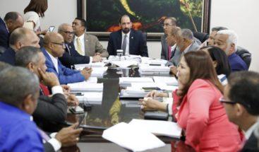 Tema de primarias continúa siendo debate en comisión estudia ley de partidos