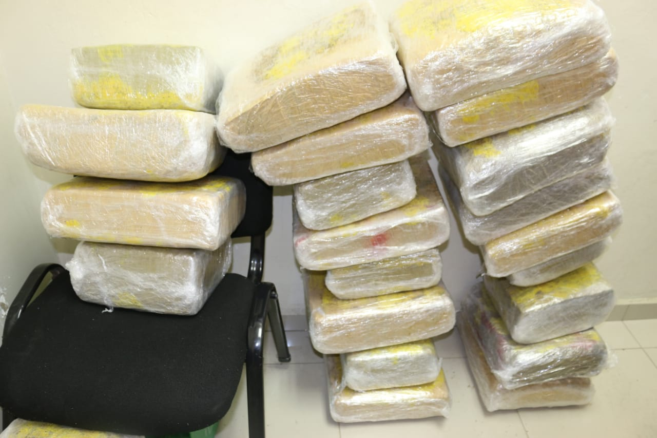 Cuerpo Especializado en Seguridad Fronteriza incautaron  24 paquetes  marihuana