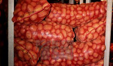 Productores esperan recuperar producción agrícola en Constanza