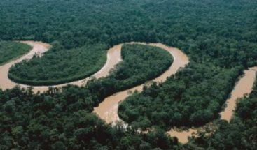 Revelan ríos amazónicos mantiene un papel crucial de diversidad aviar