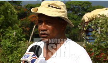 Productores de arroz piden auxilio ante sequía