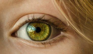 Comprueban que la ceguera puede ser reversible por terapia genética