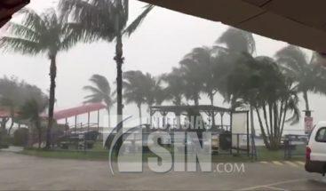 Fuertes vientos derriban palmeras y causan daños en Costa Rica