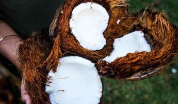 Revelan que el aceite de coco puede ser un gran amenaza para la salud