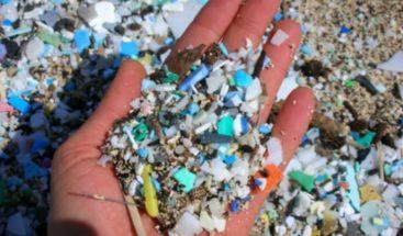 Microplásticos y sobrepesca son las amenazas más graves para los océanos