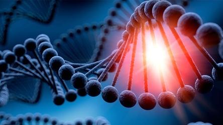 Hallan mecanismo de células para reparar ADN afectado por radiación UV