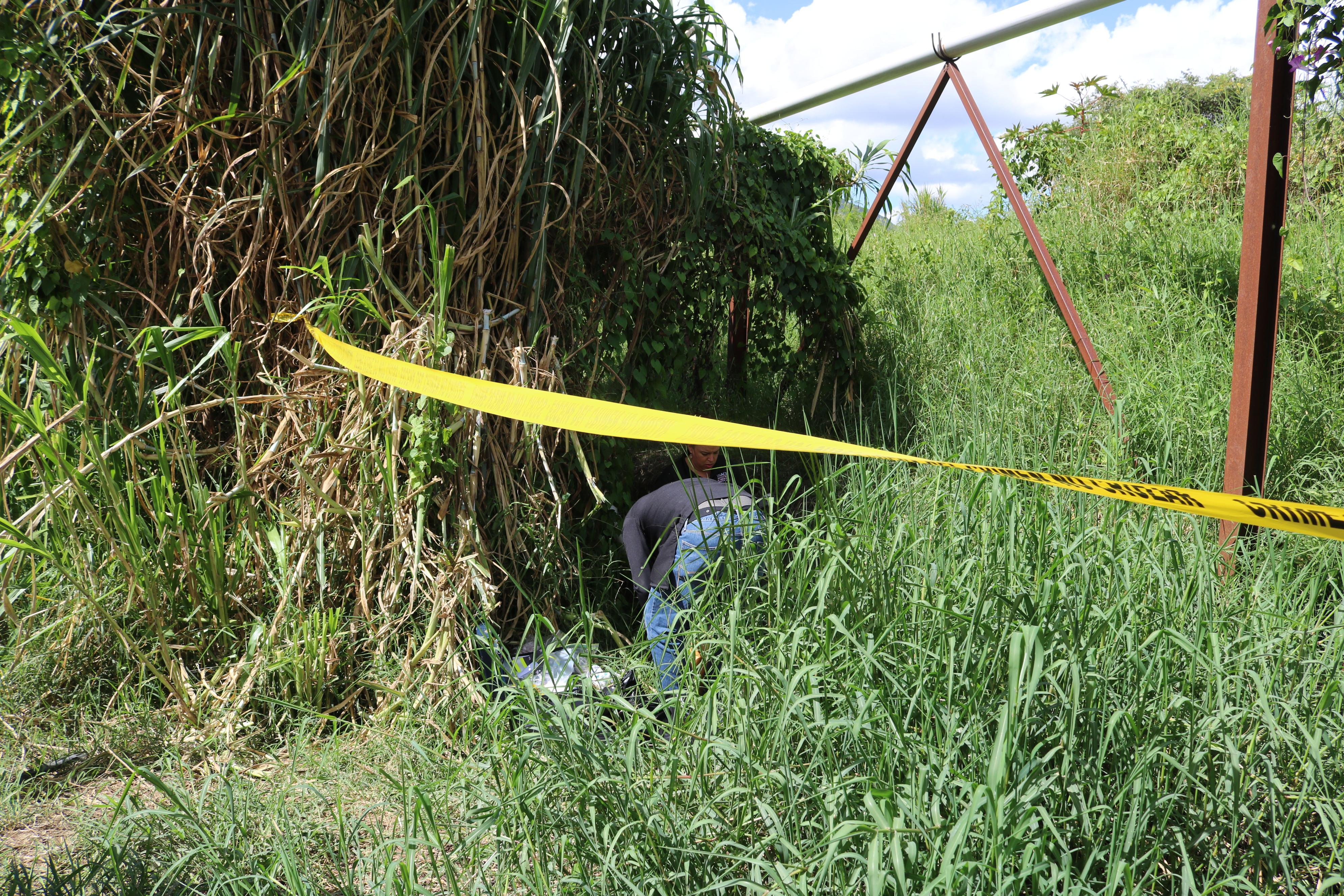 Encuentran cadáver de una mujer en unos matorrales en Constanza