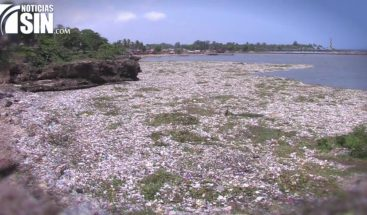 Cámara de Diputados aprueba ley sobre manejo de residuos sólidos