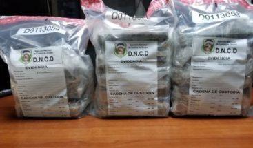DNCD ocupa 13 paquetes de cocaína en DN