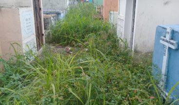 Ciudadanos denuncian situación deplorable del cementerio Cristo Salvador