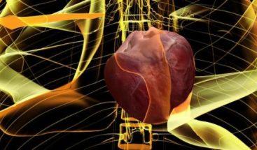 Un 25% de los mayores de 40 años pueden presentar arritmia en el corazón