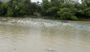 Instalan primera biobarda en Rio Nigua para recolectar desechos sólidos