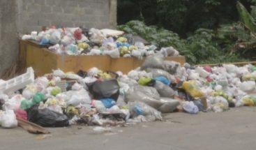Denuncian basura acumulada se apodera de sectores de SDN