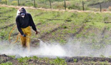 Plaguicidas elaborados con hongos, alternativa verde a los pesticidas