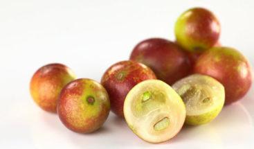 Una exótica fruta del Amazonas podría ayudar contra la obesidad