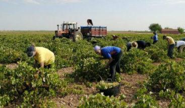 Transformación digital centra debates del foro global en futuro agrícola