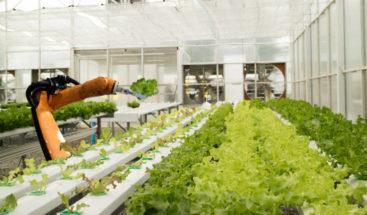 Robótica, genética y agricultura espacial, claves en lucha contra hambre