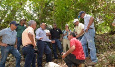 Medio Ambiente dice que busca soluciones para Sierra de Bahoruco