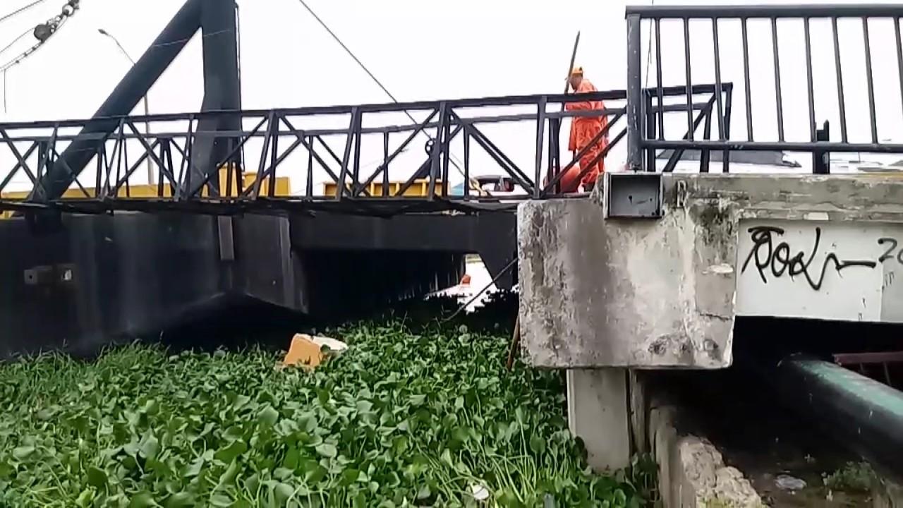 Acciones que podrían ser la causa de la basura y las lilas en Malecón SD