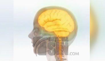 Principales factores de riesgo y síntomas de la esquizofrenia