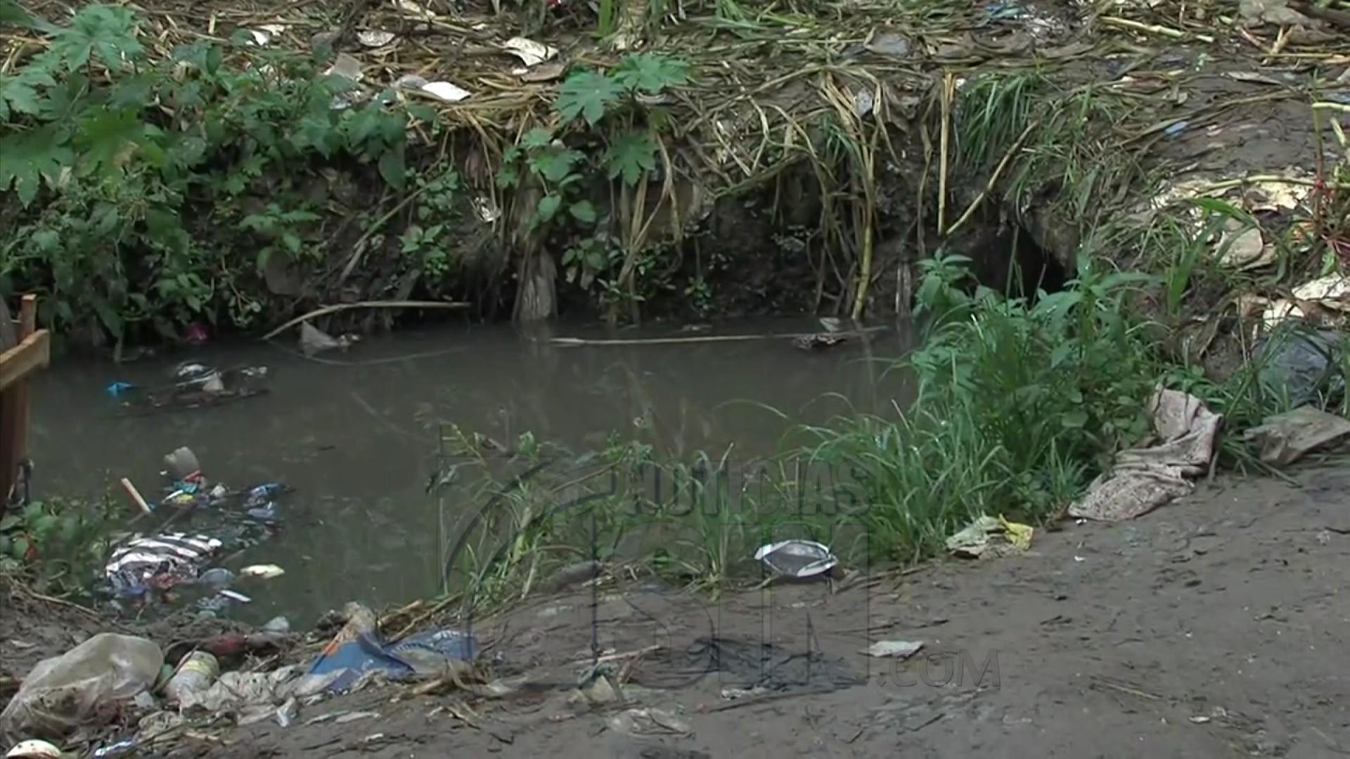 Aúnsin rastros de cocodrilo visto en cañada de Sabana Perdida