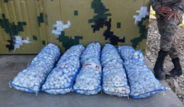 Decomisan contrabando de ajo durante operativo en varias provincias