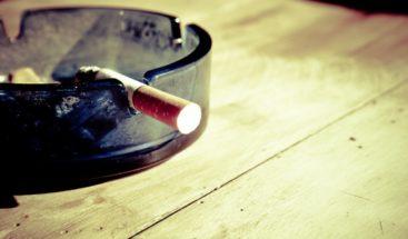 Cultivo del tabaco impacta el medio ambiente y perjudica el desarrollo