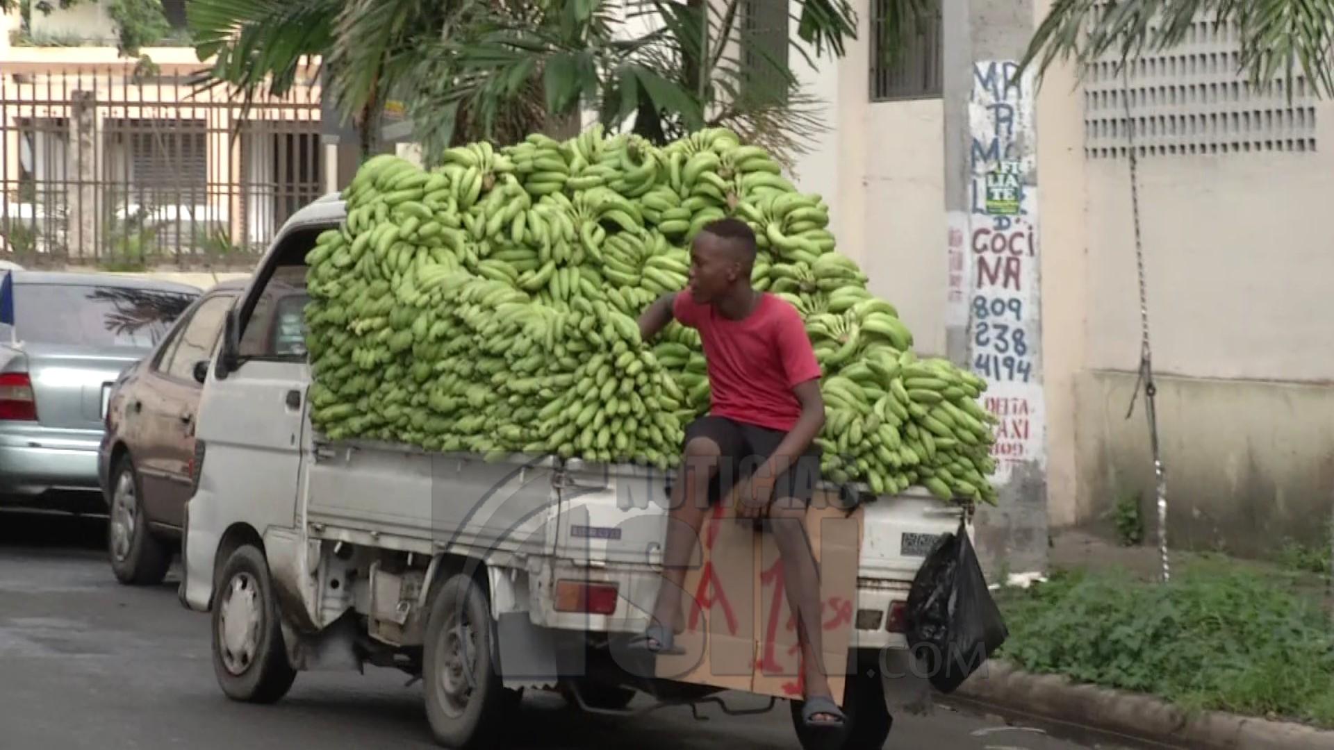 Vendedores de guagüitas plataneras se quejan por retención de vehículos
