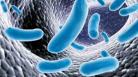 Arca de Noé de microbioma humano sería antídoto contra crisis de salud
