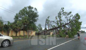 Huracán Michael deja daños catastróficos en el Estado de la Florida