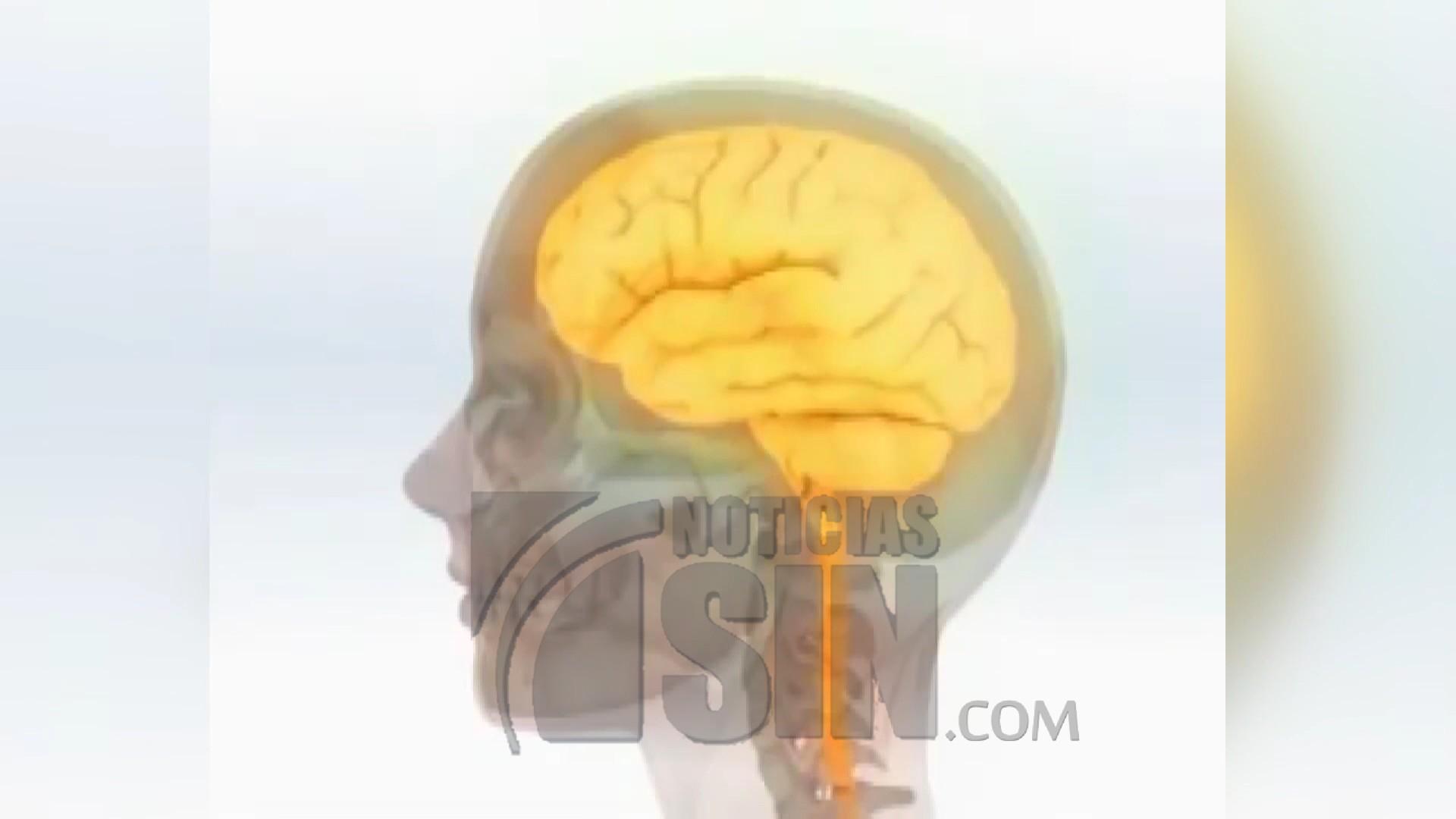 Los beneficios del sueño para la memoria
